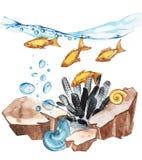 Marine Life Landscape - el océano y el mundo subacuático con diversos habitantes Concepto para los carteles, T del acuario Imagen de archivo libre de regalías