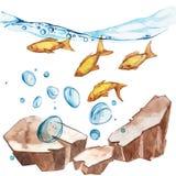 Marine Life Landscape - el océano y el mundo subacuático con diversos habitantes Concepto para los carteles, T del acuario Fotografía de archivo libre de regalías