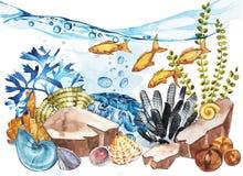 Marine Life Landscape - l'oceano ed il mondo subacqueo con differenti abitanti Concetto per i manifesti, T dell'acquario Fotografie Stock