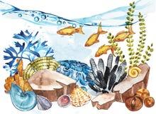 Marine Life Landscape - l'oceano ed il mondo subacqueo con differenti abitanti Concetto per i manifesti, T dell'acquario Immagine Stock