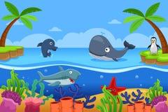 Marine Life no oceano Imagens de Stock