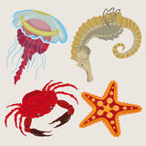 Marine life. sea creatures small Stock Images