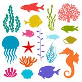 Marine life set of icons, objects and sea animals Royalty Free Stock Photography
