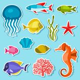 Marine life set of sticker, objects and sea Royalty Free Stock Photo