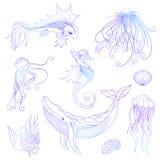 Marine life set, vector illustration, sea and ocean creatures. Whale, fish, shellfish, jellyfish, seahorse Stock Photos