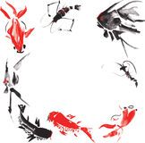 Marine life such as - shrimp, angelfish , marble carp , goldfish Royalty Free Stock Photo