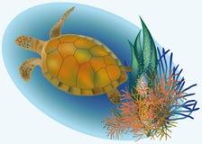 Marine life with turtle Stock Image