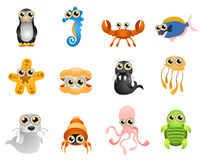 Marine life vector. Marine life. cartoon illustration series 6 Royalty Free Stock Image