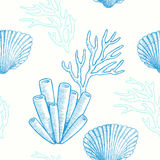 Marine life. Vector seamless pattern Stock Images