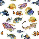 Marine life watercolor seamless pattern with Tropical fish Royalty Free Stock Photo
