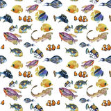 Marine life watercolor seamless pattern with Tropical fish Stock Photos