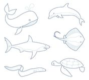 The outlines of sea creatures. Marine life. Whale, dolphin shark stingray eel turtle Royalty Free Stock Photo