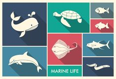 The silhouettes of sea creatures. Marine life. Whale, dolphin shark stingray eel and turtle Royalty Free Stock Images
