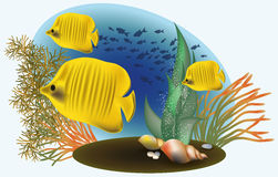 Marine life with yellow fish. Vector illustration Stock Image