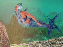 Marine Mermaid Swimming nel mare fotografia stock