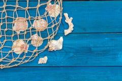 Marine Network och skal på blåa bräden Royaltyfria Foton