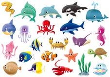 Marine organisms. A variety of marine organisms Stock Images