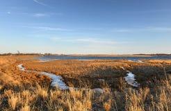 Marine Park Salt Marsh Brooklyn, New York Arkivbilder
