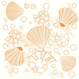 Marine pattern with shells Royalty Free Stock Image