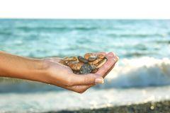 Marine pebbles in a female hand. Colorful marine wet pebbles in a female hand on a background of the sea with the waves stock images