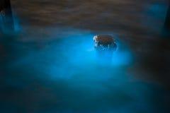 Marine Plankton. Glow in the dark in Thailand, bioluminescence Stock Photo