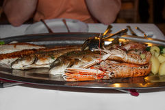 Marine platter of sea bass , shrimp, seafood grilled with olive oil on a silver tray. Marine platter of sea bass , shrimp, seafood grilled with olive oil with royalty free stock photos
