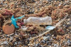 Marine pollution. Plastic bottle cup and bag mixed with nature washed up on beach stock photos