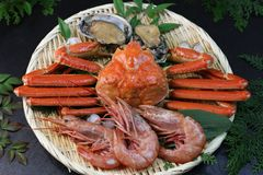 Marine products helping of various kinds of dishes. I served an abalone, a deep red snow crab, red prawns to a colander Stock Photography
