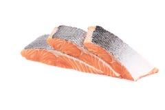 Marine raw fish. Stock Photos