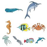 Marine related icon set. Marine and river inhabitants. Fish, whales, octopuses.Sea animals icon in set collection on cartoon style vector symbol stock web Royalty Free Stock Images