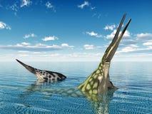 Marine Reptile Hupehsuchus Stock Image
