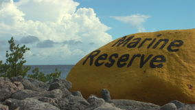 Marine reserve on Bonaire stock video footage