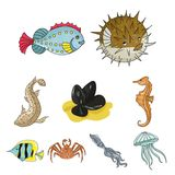 Marine and river inhabitants icons. Marine and river inhabitants. Fish, whales, octopuses.Sea animals icon in set collection on cartoon style vector symbol stock Royalty Free Stock Images