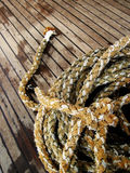 Marine rope Royalty Free Stock Images