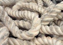Marine Rope Arkivfoton
