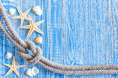 Marine rope with sea shells Stock Photography