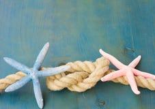 Marine rope with starfish Stock Photos