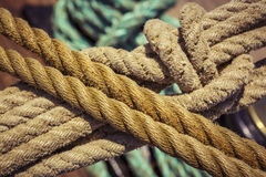 Marine ropes with knot Royalty Free Stock Images