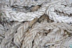 Marine Ropes And Knots. Marine knots and ropes in the tallship Stock Photo