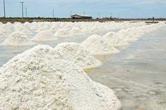 Marine salt farm Stock Photo