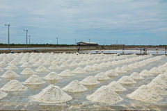 Marine salt farm Royalty Free Stock Photo