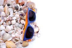 Marine sea background with shells and sunglasses Stock Image