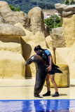 Marine Seal en el acuario que abraza y que baila con el instructor Imagen de archivo