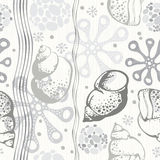 Marine seamless pattern. Monochrome hand drawn  illustrati Royalty Free Stock Photography