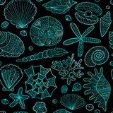 Marine seamless pattern, ornate seashells for your design Royalty Free Stock Image
