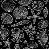 Marine seamless pattern, ornate seashells for your design Stock Photos