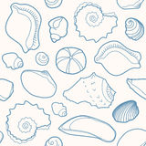 Marine seamless pattern with shells Stock Photos
