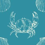 Marine seamless pattern. Sea life. Hand drawn illustration scallop shells and crab vector illustration