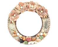Marine seashell circle frame. Stock Photo
