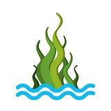 Marine seaweed sealife icon. Vector illustration design royalty free illustration